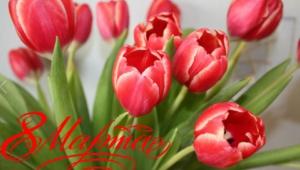 С 8 марта, дорогие девушки и женщины! С наступающим Международным женским днем!